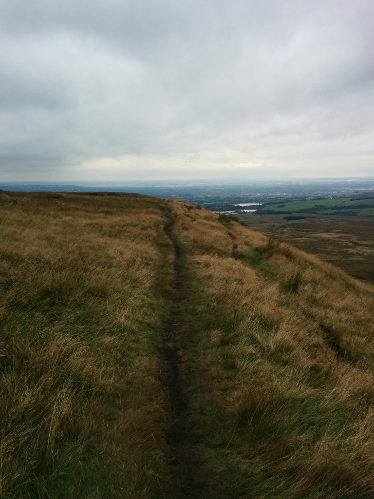 View from Winter Hill